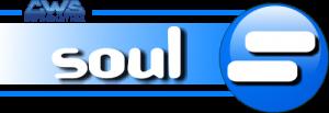 SOUL - Il software per Periti assicurativi, Accertatori e Società di servizi